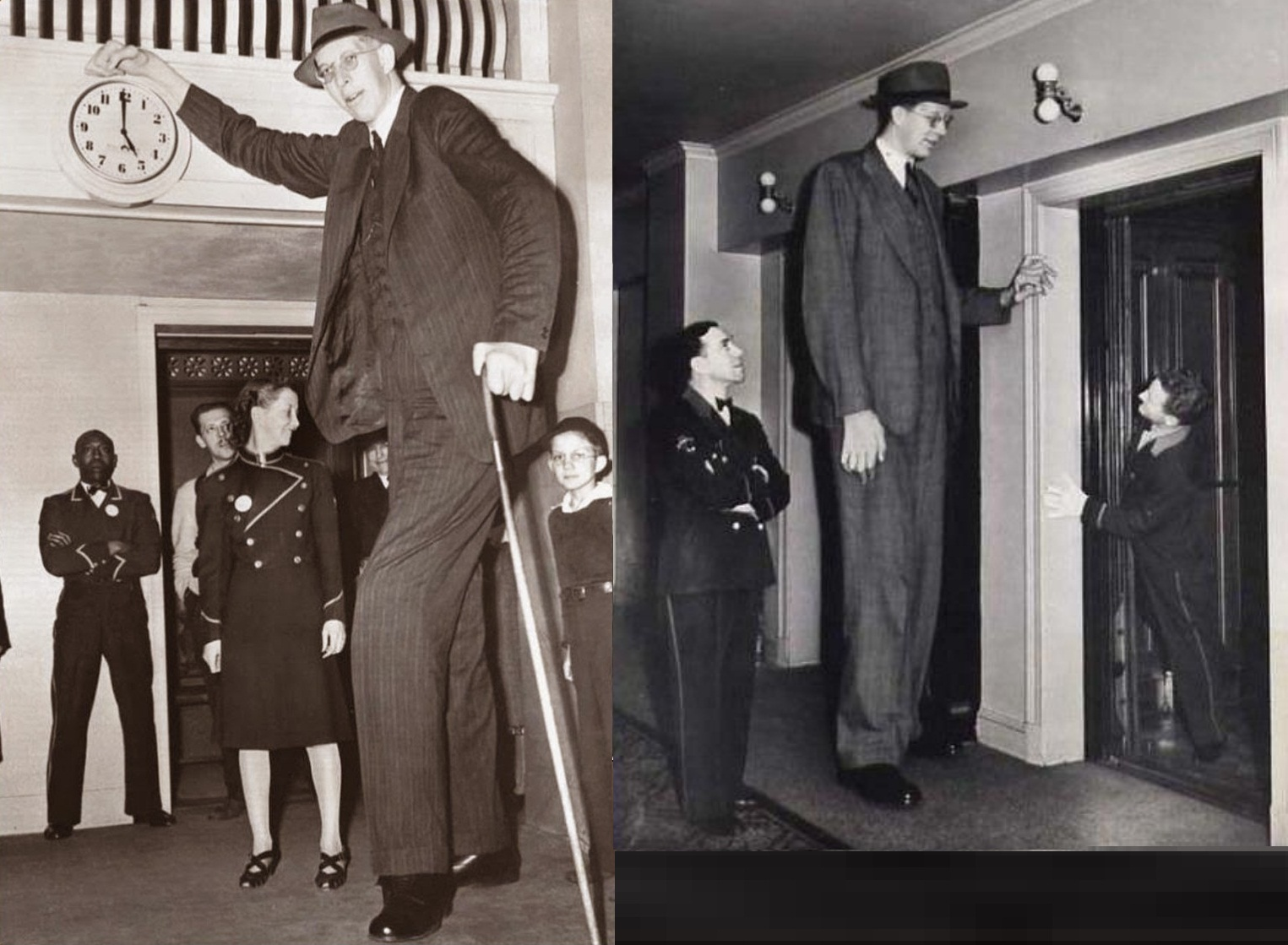 the tallest man ever robert wadlow falingles
